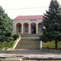 Станция Таврическ, Васильевка