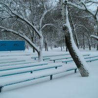 Парк зимой, Веселое