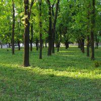 Парк (2010.05.07), Гуляйполе