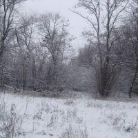Зимний  пейзаж, Гуляйполе