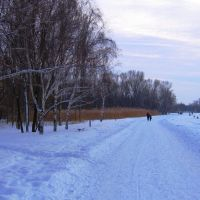 Red river valley...Winter road..., Запорожье