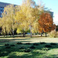 Осенняя палитра, Запорожье
