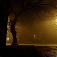 Fog, Запорожье