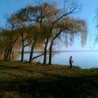 Осень 2007, берег Белозёрского лимана, Каменка-Днепровская