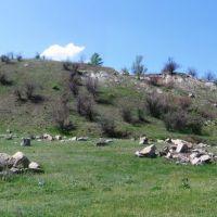 Террикон, Каменное