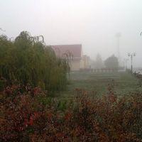 Туман, ж.д. вокзал, Камыш-Заря