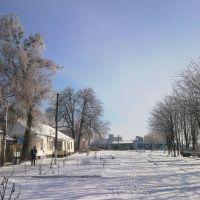 Зимний день, Камыш-Заря
