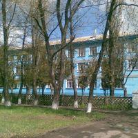 Школа, Камыш-Заря