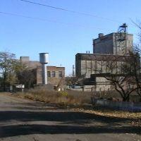 Комбикормовый завод, Камыш-Заря