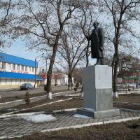 памятник В.В.Куйбышеву, Куйбышево