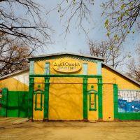 Дискотека «Элегия» в парке Горького, Мелитополь