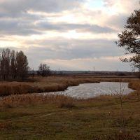 Tersa(река Терса), Новониколаевка
