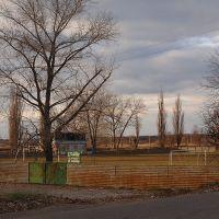 Stadion, Новониколаевка