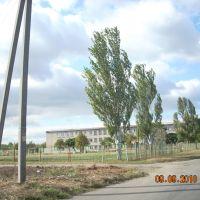 Спец школа Интернат, Новониколаевка