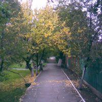 ул. Гоголя, Орехов