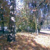 На ковре из желтых листьев..., Орехов