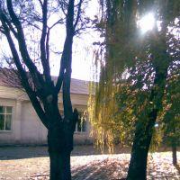 Осень, Орехов