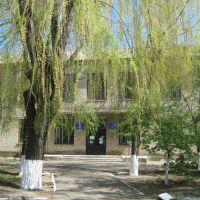 Районная библиотека, Орехов