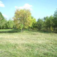 м. Пологи, міський парк близ ріки Конка (Кінська), Пологи