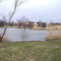 """р. Конка, став """"Штани"""", вид на приватні оселі села Пологи, Пологи"""