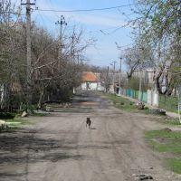 ул. Мичурина на запад, Пологи