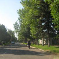 ул. Морская, Приморск