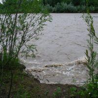 Bystrutsia, Богородчаны