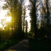 Park, Богородчаны