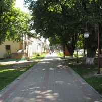 Street in Bolehiv, Болехов