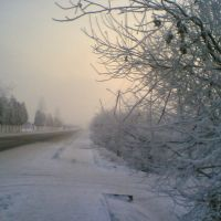 Beautiful but cold winter, Брошнев-Осада
