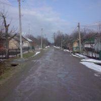 Street in spring, Брошнев-Осада