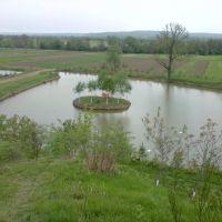 Swans home, Брошнев-Осада