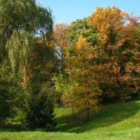 Початок осені, Букачевцы