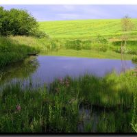 Весняний день на озері., Букачевцы