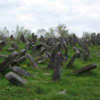 повалені плити жидівських могил ..