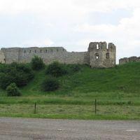 Castle in Pnyov (Замок в Пневе), Бытков
