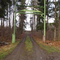 лісові ворота .., Бытков