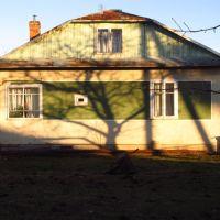 тінь дерева на хаті .., Бытков