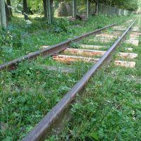 Narrow-Gage Railroad, Выгода