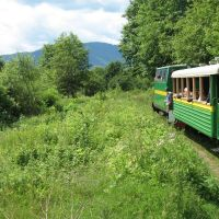 Carpathian Tram, Выгода