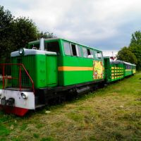 Сarpathian tram, Выгода