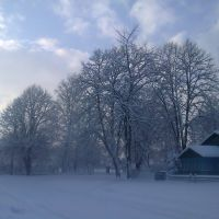 2013-зима, Выгода