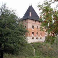 Old Castle in Halych (Galich), Ivano-Frankivsk Oblast, western Ukraine, Галич