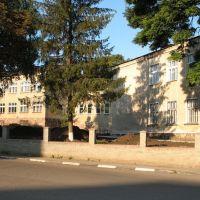 Гімназія (школа№1)**, Городенка