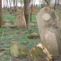старое еврейское кладбище, Городенка