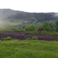 Гірський пейзаж, Делятин