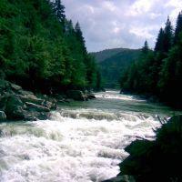river prut, Делятин