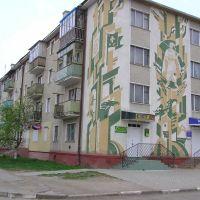 ВУЛ. ХМЕЛЬНИЦЬКОГО, 21, Калуж