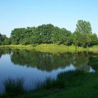 Озеро в парке, Надворна