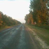Ukraińska droga przez ukraiński step szeroki